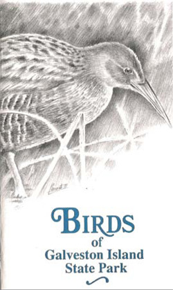 clapper rail illustration on the cover of the Galveston Island State Park bird checklist