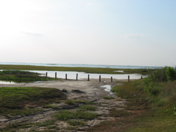 a view of Galveston Bay from the end of the park's bayside road