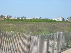 looking east from the beach towards the border of the Galveston Island State Park