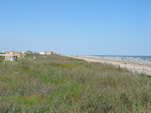 the front of the public picnic area, beach dune, and beach